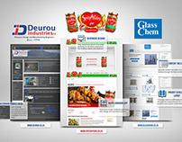 Web Design & Development 2013