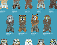 Owls of Oregon poster