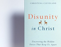 Disunity in Christ Book Cover