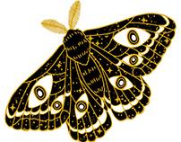 Space moth