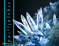 "Camellia ""crystallized"" Artworks"