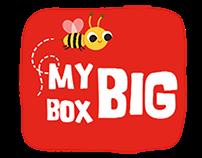 My Big Box Little Library