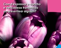 Mirian Flores
