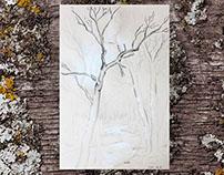 El bosque de Eva