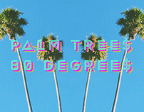 ▾▾ Palm Trees & 80 Degrees ▾▾