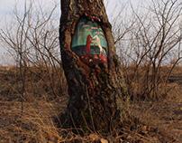 Paintings on trees. Street art project