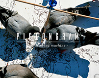 PigeonGram - Tracing Animal Activity