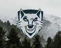 Rolf The Wolf | Brand Identity & Website