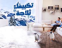 Egypt winter campaign