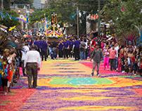 Fiesta del Buen Temporal. 2016