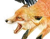 A Fox Story