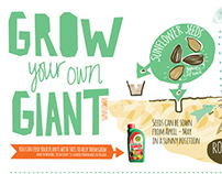 Infogram - Grow your own Sunflower