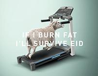 Fitness (Happy Eid)