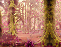 concept art foggy forest
