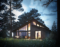 ArchViz/Forest house