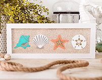 Seashell Wall Art