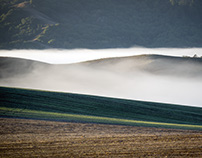 Chasing the Fog in Sonoma County California