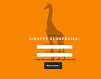 Giraffe Conservation Interactive Art Show