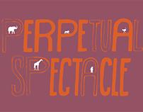 Haley Schweigert | Perpetual Spectacle