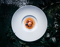 Restaurant Gastronomika. Food photography