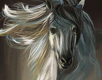 Digital painting-white horse (incomplete)