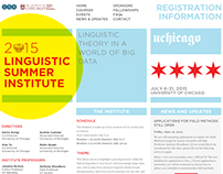 University of Chicago Summer Program Site