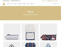Shop Posts Grid Page - Seller WordPress Theme