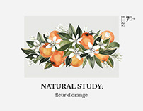 NATURAL STUDY: fleur d'orange set l by Lana Elanor