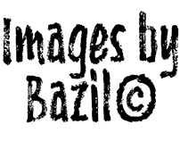 IMAGES BY BAZIL