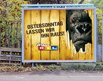 RTL | King Kong