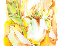 Gold Orchid - gold leaf and Watercolor