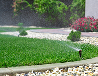 How To Get The First Green Lawn In Your Neighborhood