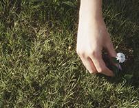 FStorm Grass experiment