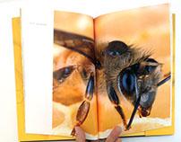 Honeybee Book Design