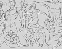 Anatomy Study (No refs)