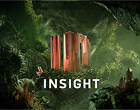 INSIGHT - Idents