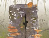 Mushroom spirits