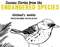 Success Stories from the Endangered Species Act