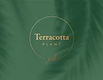Terracotta Plant — Brand Identity