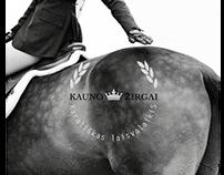 "Rebranding project for ""Kauno žirgai"""