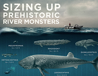 Discovery Channel Infographic
