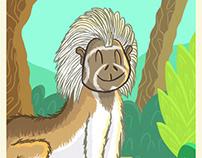 Colombian Animal Postcards