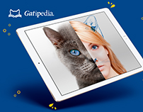 Sitio Web Gatipedia Catchow