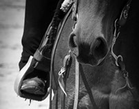 Photo Assignment - Western riding show