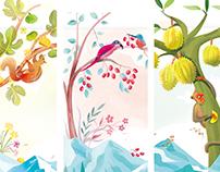 冻干水果包装插画