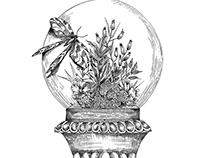 VIVARIUM | Illustration