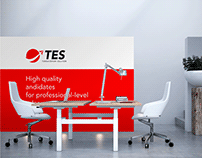 TES Logo & Identity Design