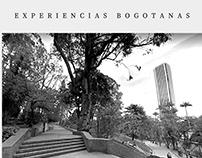 Paisaje Urbano - 20201 -