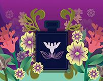 Assential Oils: logo design and illustration
