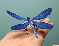 Beautiful demoiselle Paper sculpture